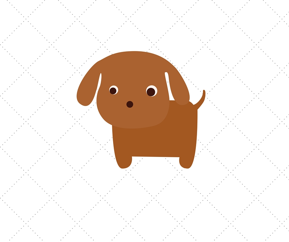 perro pies